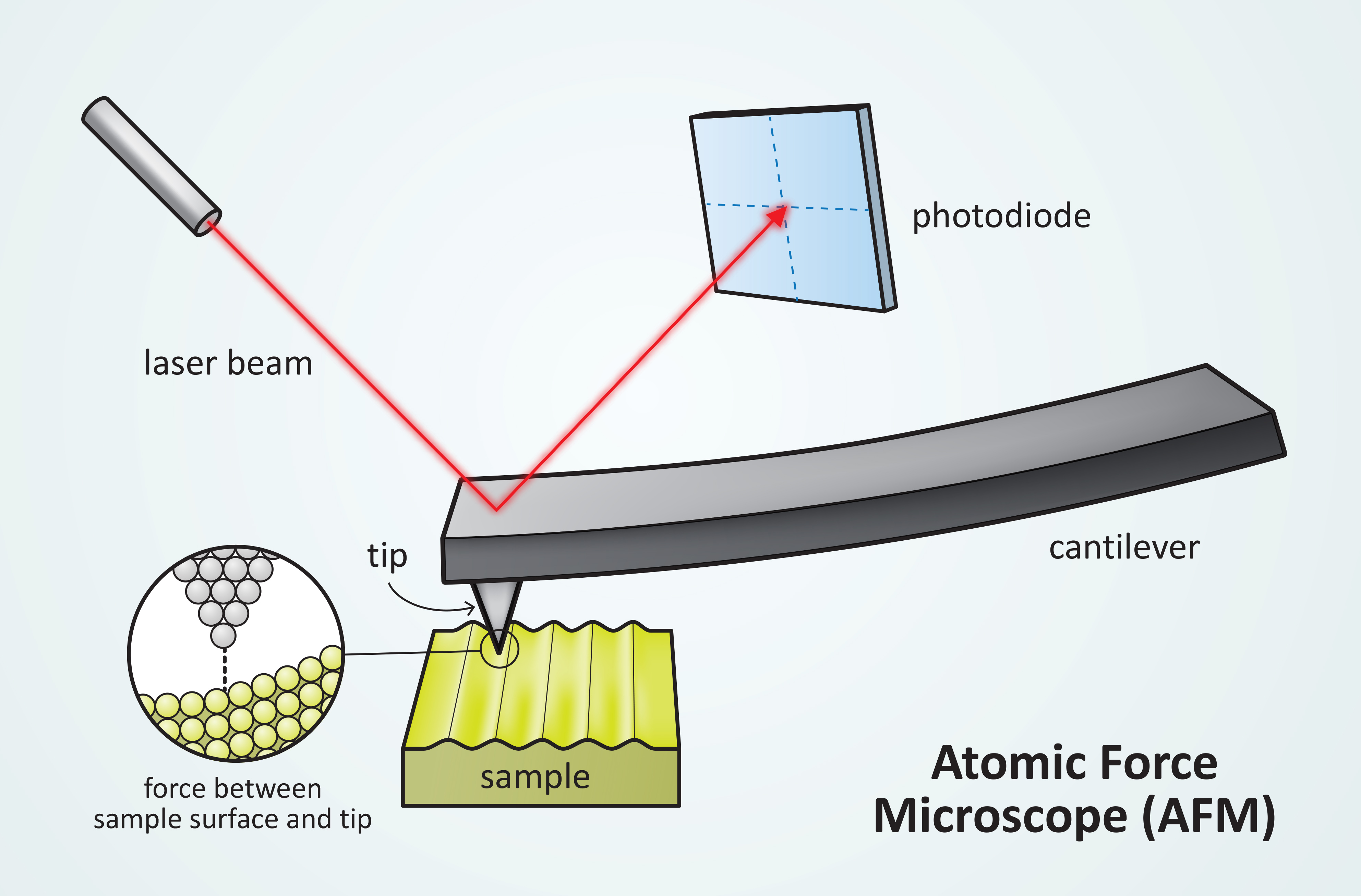Nanotechnology - Atomic Force Microscope